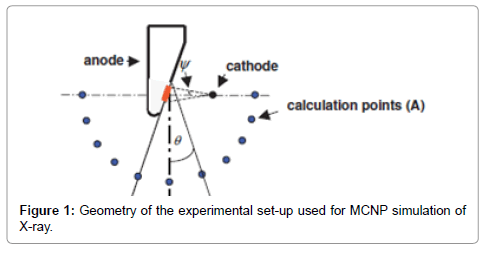 cell-science-therapy-MCNP-simulation