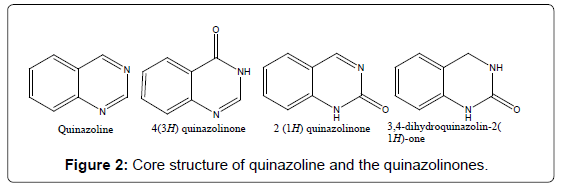chemical-biology-therapeutics-Core-structure-quinazoline