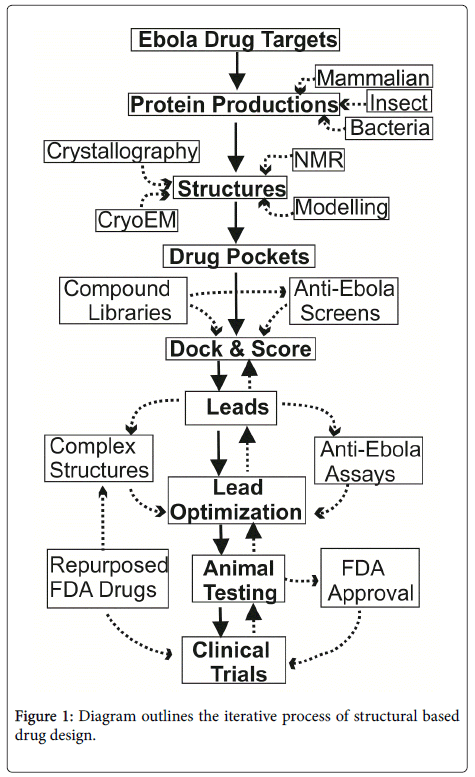 chemical-biology-therapeutics-Diagram-outlines-iterative