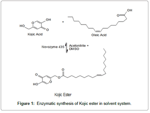 chemical-engineering-process-technology-Enzymatic-synthesis
