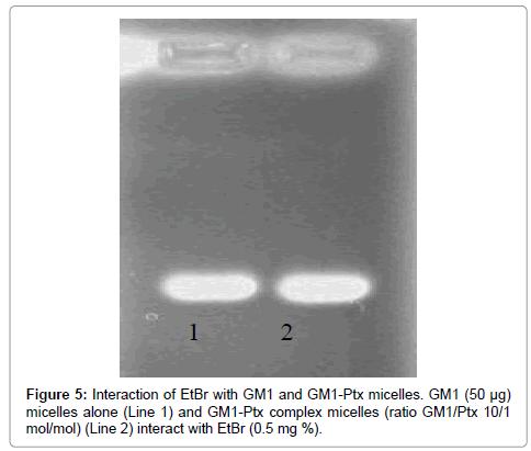 chemical-sciences-complex-micelles