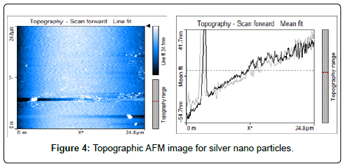 chemical-sciences-journal-Topographic