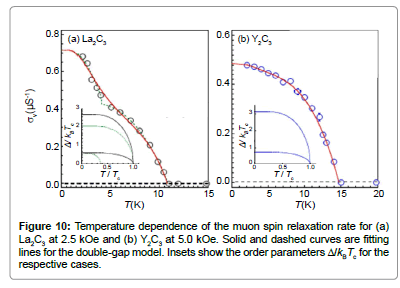 chemical-sciences-journal-muon-spin-relaxation