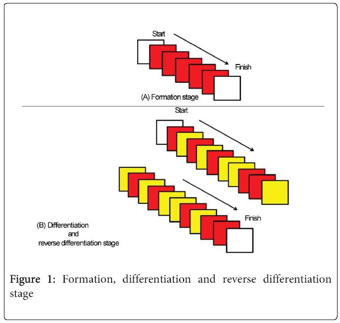 child-adolescent-behavior-reverse-differentiation