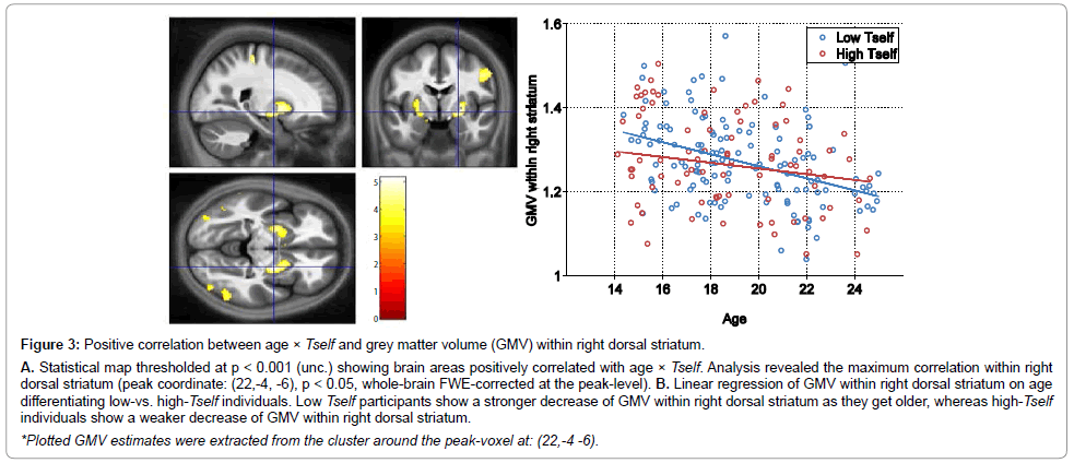 child-and-adolescent-behavior-grey-matter