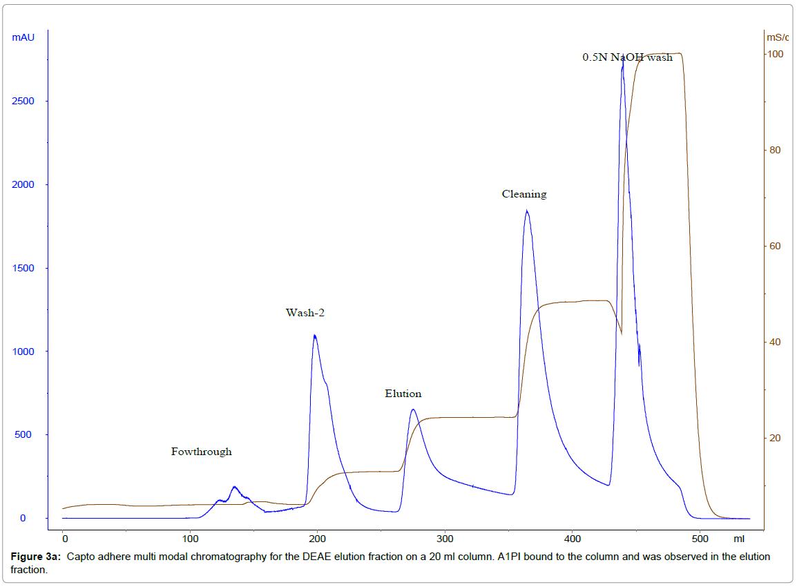 chromatography-separation-techniques-Capto-adhere-chromatography