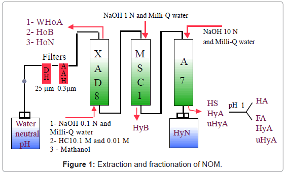 chromatography-separation-techniques-Extraction-fractionation-NOM