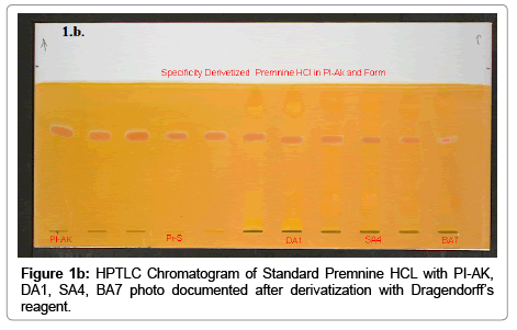 chromatography-separation-techniques-HPTLC-Chromatogram