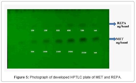 chromatography-separation-techniques-HPTLC-plate
