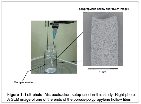 chromatography-separation-techniques-Microextraction-setup