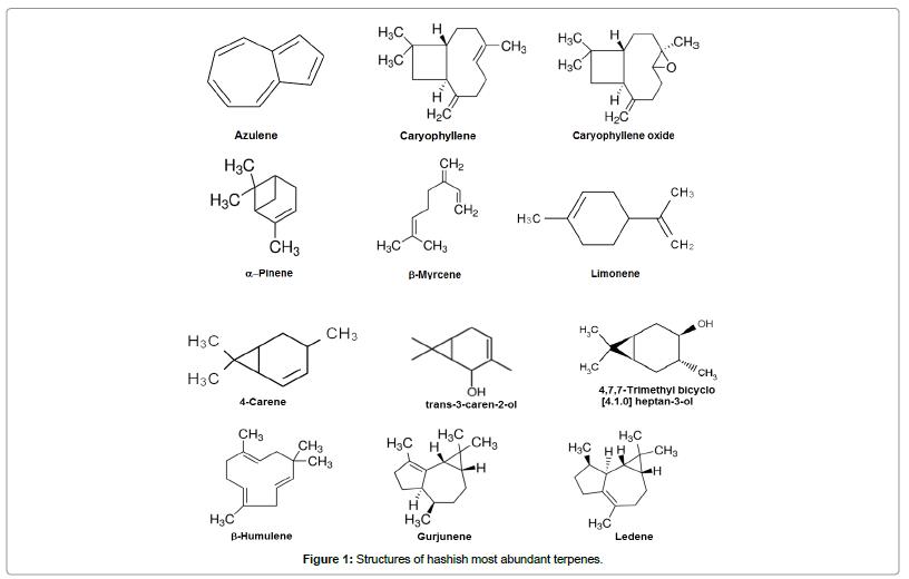chromatography-separation-techniques-Structures-hashish-most-abundant-terpenes