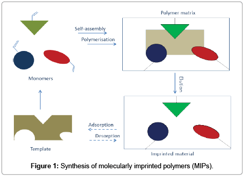 chromatography-separation-techniques-Synthesis-molecularly
