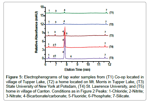 chromatography-separation-techniques-Tupper-Lake