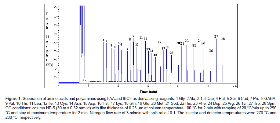 chromatography-separation-techniques-amino-acids