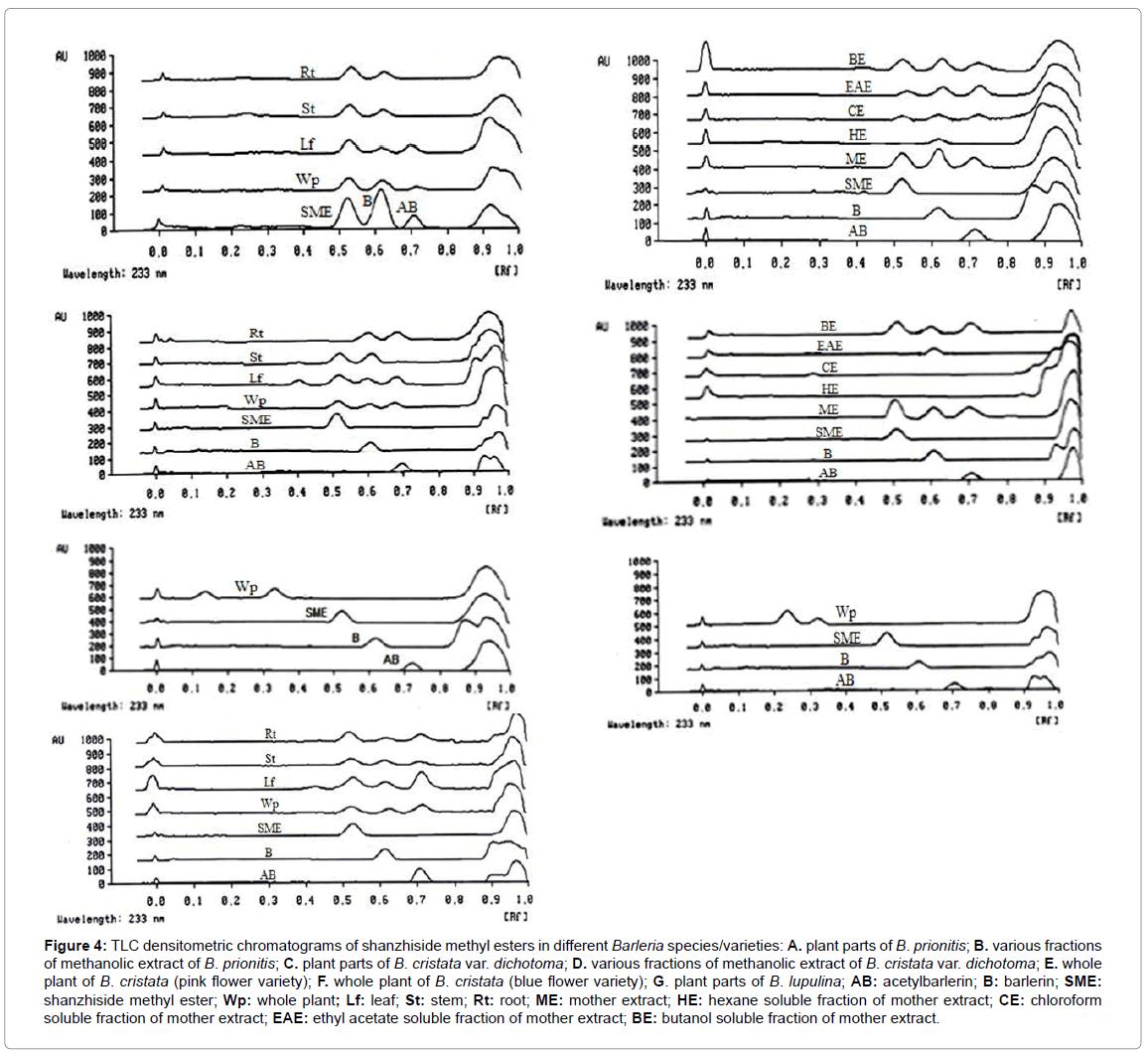 chromatography-separation-techniques-densitometric-chromatograms-shanzhiside