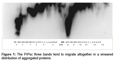 chromatography-separation-techniques-migrate-altogether