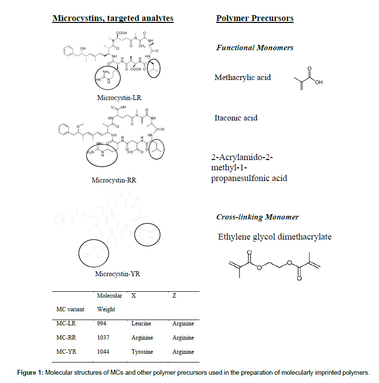 chromatography-separation-techniques-polymer-precursors