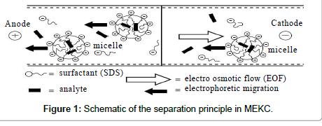 chromatography-separation-techniques-separation-principle