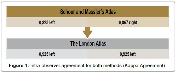 civil-legal-sciences-Intra-observer-agreement-methods