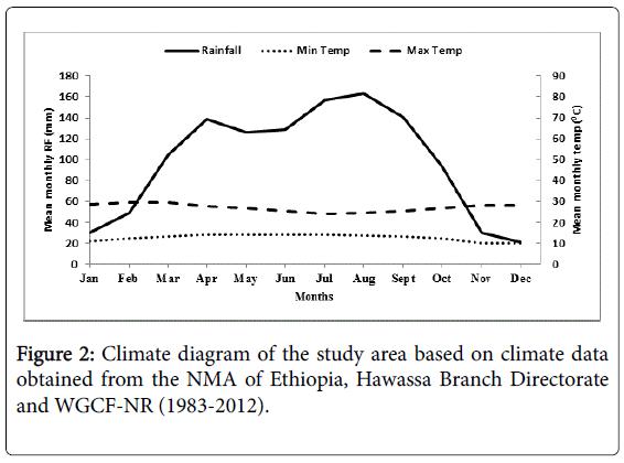 climatology-weather-forecasting-climate-data