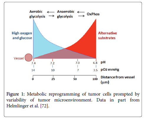 clinical-cellular-immunology-Metabolic-reprogramming