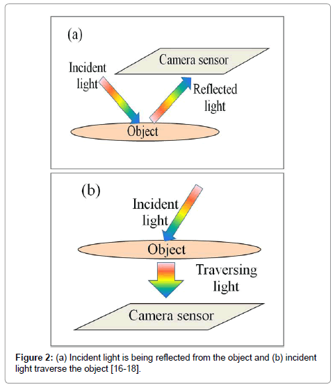 clinical-experimental-cardiology-Incident-light