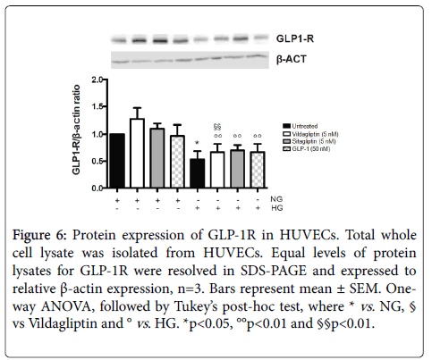 clinical-experimental-cardiology-Protein-expression