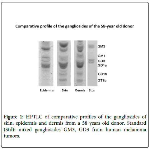 clinical-experimental-dermatology-research-HPTLC-comparative