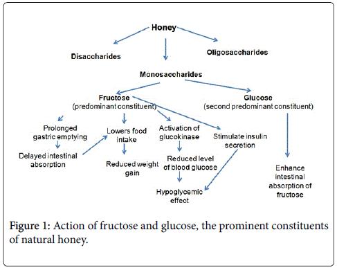 clinical-experimental-fructose-glucose