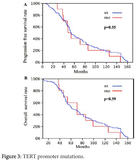 clinical-experimental-pathology-TERT-promoter-mutations