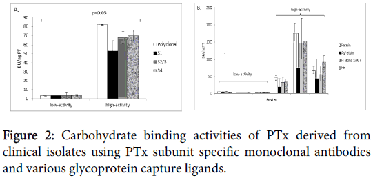 clinical-experimental-pathology-glycoprotein-capture-ligands
