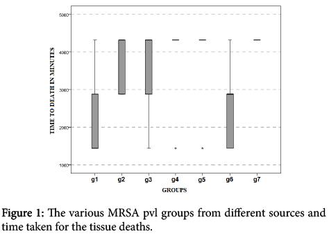 clinical-experimental-pathology-various-MRSA-pvl-groups