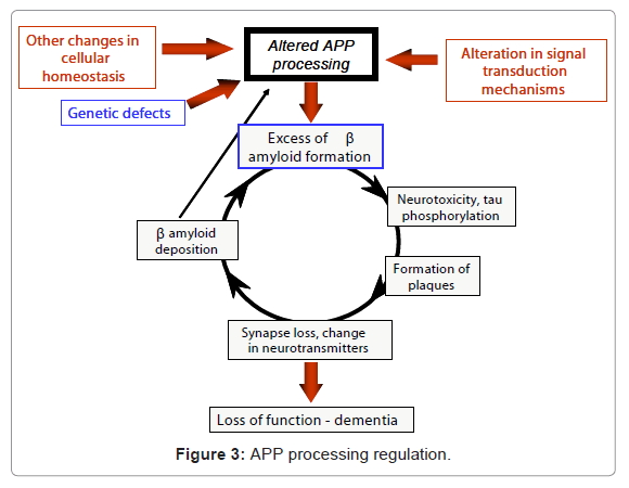 clinical-experimental-pharmacology-processing-regulation