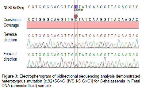 clinical-medical-biochemistry-bidirectional-sequencing