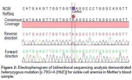 clinical-medical-biochemistry-heterozygous-mutation