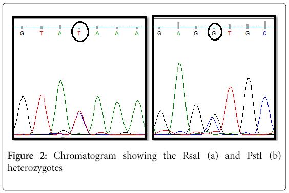 clinical-medical-genomics-Chromatogram