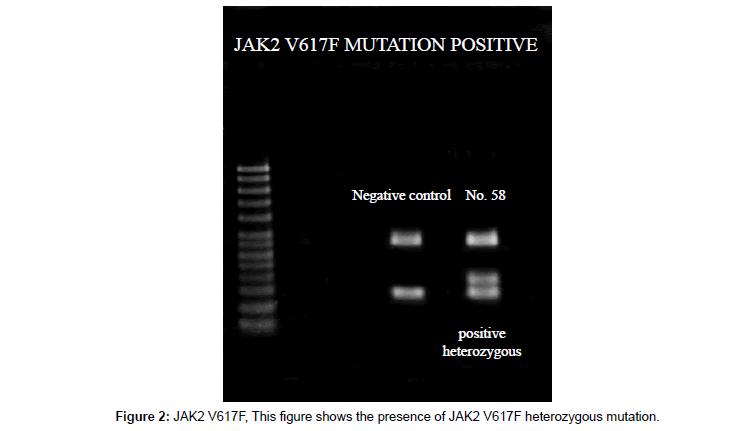 clinical-medical-genomics-heterozygous-mutation