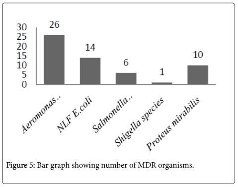 clinical-microbiology-Bar-graph