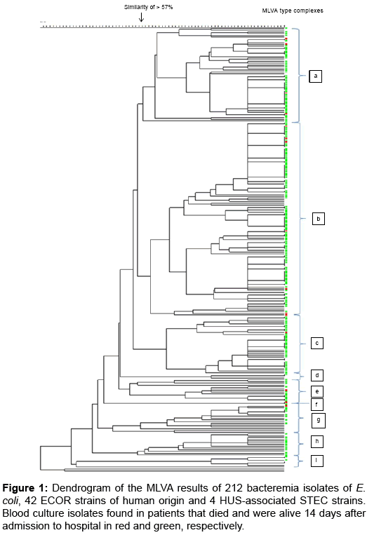 clinical-microbiology-Dendrogram-MLVA-results