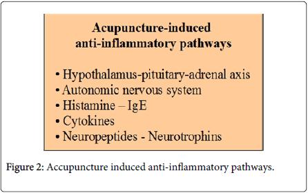 clinical-neuroimmunology-anti-inflammatory