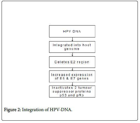 clinical-pathology-Integration