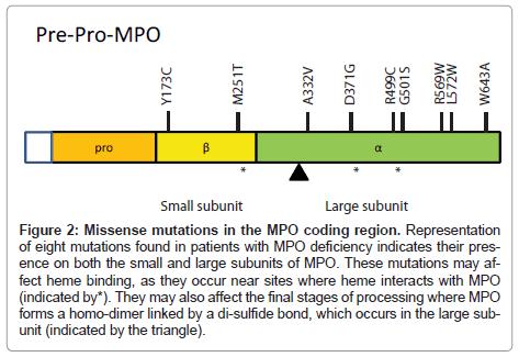 clinical-pathology-Missense-mutations