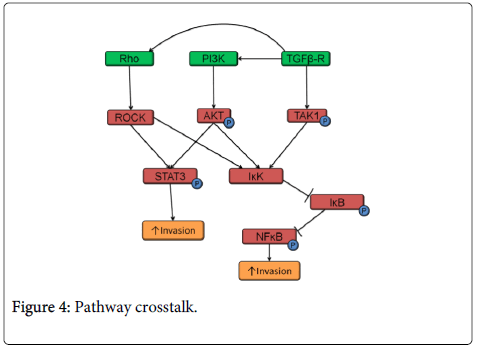 clinical-pathology-Pathway-crosstalk