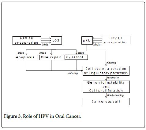 clinical-pathology-Role-Cancer
