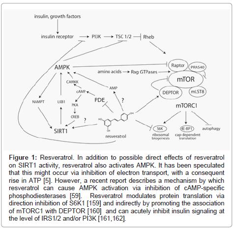 clinical-pathology-mechanism-direct