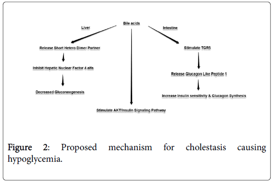 clinical-pediatrics-Proposed-mechanism