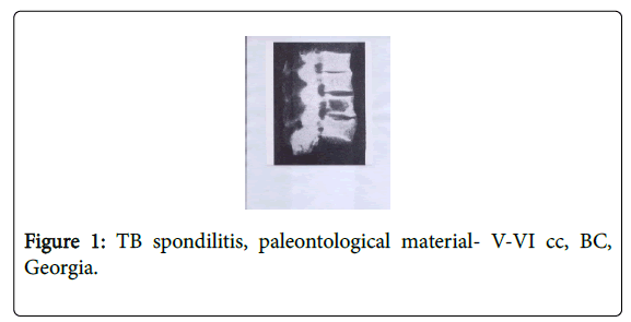 clinical-research-bioethics-paleontological-material