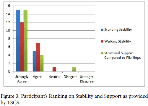 clinical-research-foot-ankle-Ranking-Stability-Support