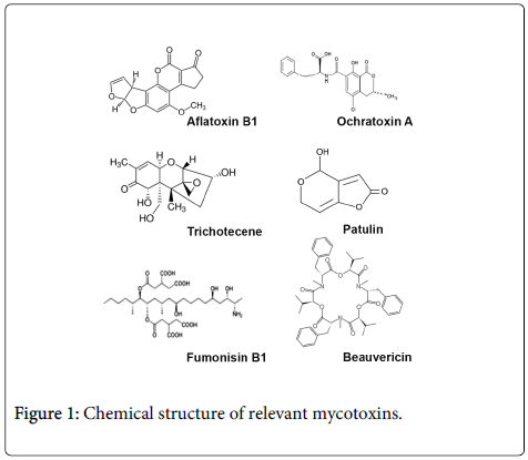 clinical-toxicology-Chemical-structure