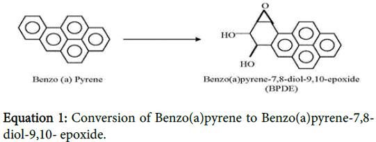 clinical-toxicology-Conversion-Benzo